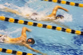 competitive swimming picture